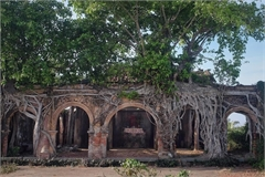 A 100-year-old communal house under Bodhi tree roots
