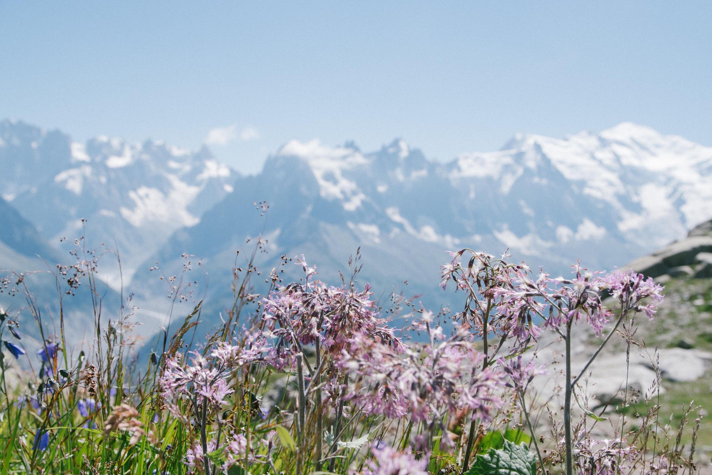 Haute-Savoie anh 15