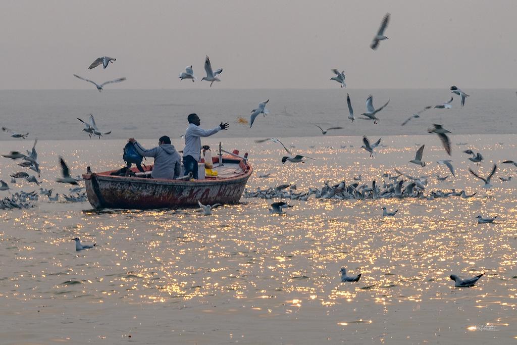 Dao buoc Varanasi, thanh pho ky bi ben song Hang hinh anh 3 HKE3646.jpg