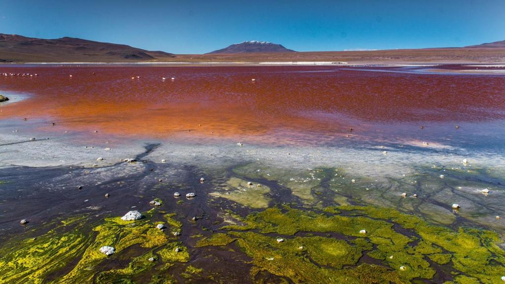 Cảnh siêu thực quanh cánh đồng muối lớn nhất thế giới Zing_a10
