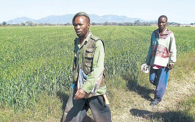 Cuu Tong thong Zimbabwe Robert Mugabe giau co co nao? hinh anh 11