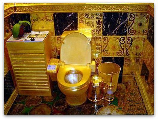 Nhung toilet dat nhat hanh tinh hinh anh 1