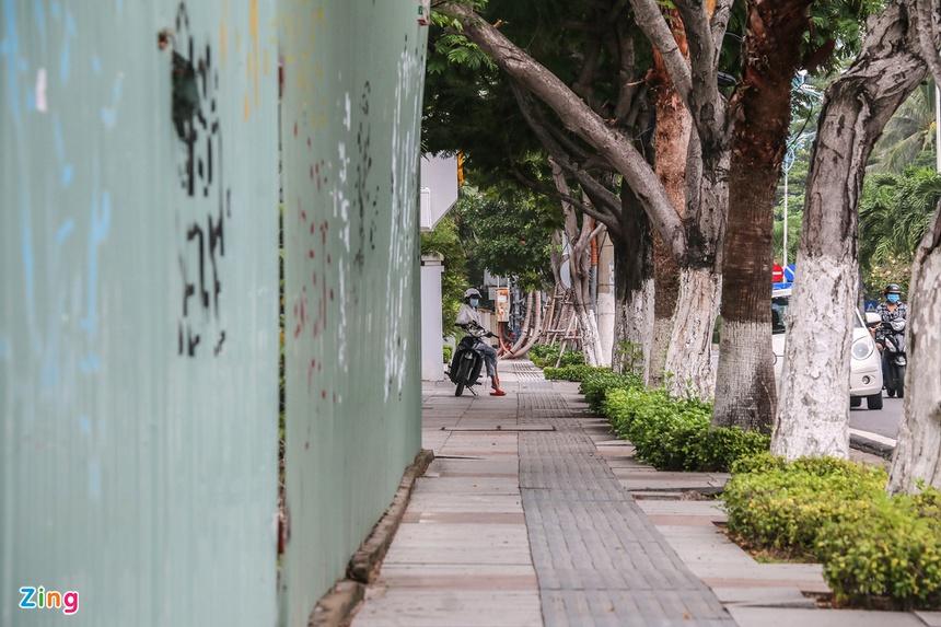 dat vang bo hoang o Nha Trang anh 5