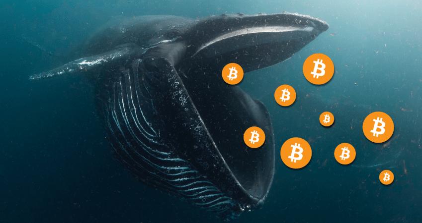 Bitcoin kho ma thanh cong anh 2