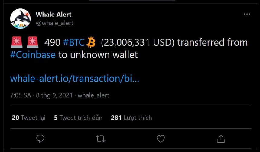 Ca voi mua 490 Bitcoin khi thi truong 'sap gia' anh 1