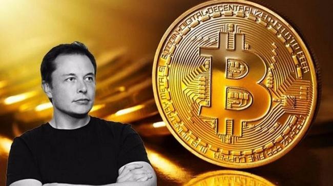 Tesla mat het loi nhuan vi Bitcoin anh 2